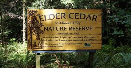Elder Cedar Nature Reserve; Gabriola Island
