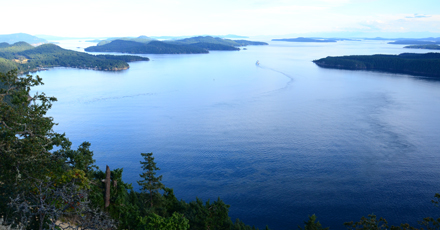 View of an ocean channel between inlets from a green tree covered hillside on Galiano Island