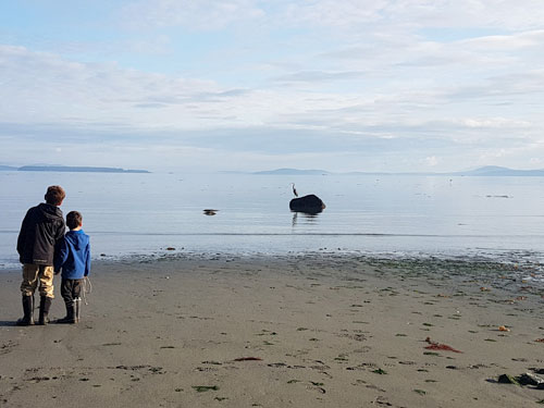 two boys on a beach watching a crane on a rock in the water