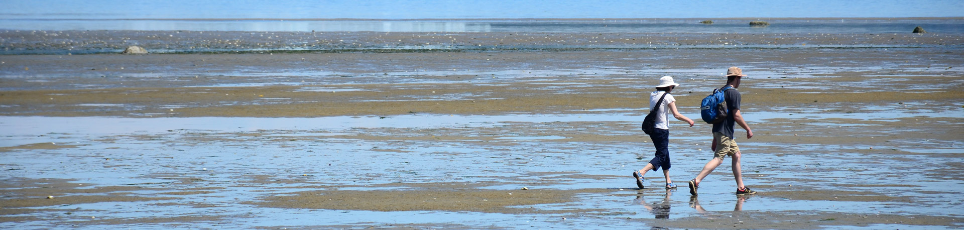 Side profiles of a man and woman walking a shore on low tide