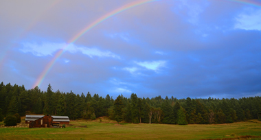 rainbow leading to a big red barn in a field with green trees and a cloudy blue sky in the background