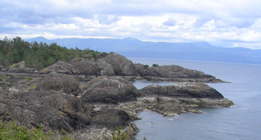 gray rocks and boulders with green trees in the background on the edge of the ocean under a cloudy sky