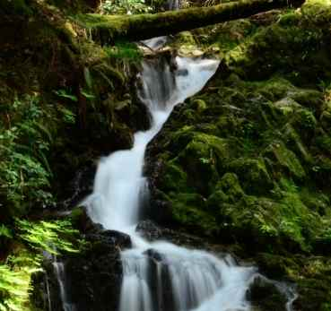 Salt Spring Island Waterfall