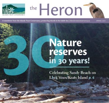 heron newsletter cover march 2021
